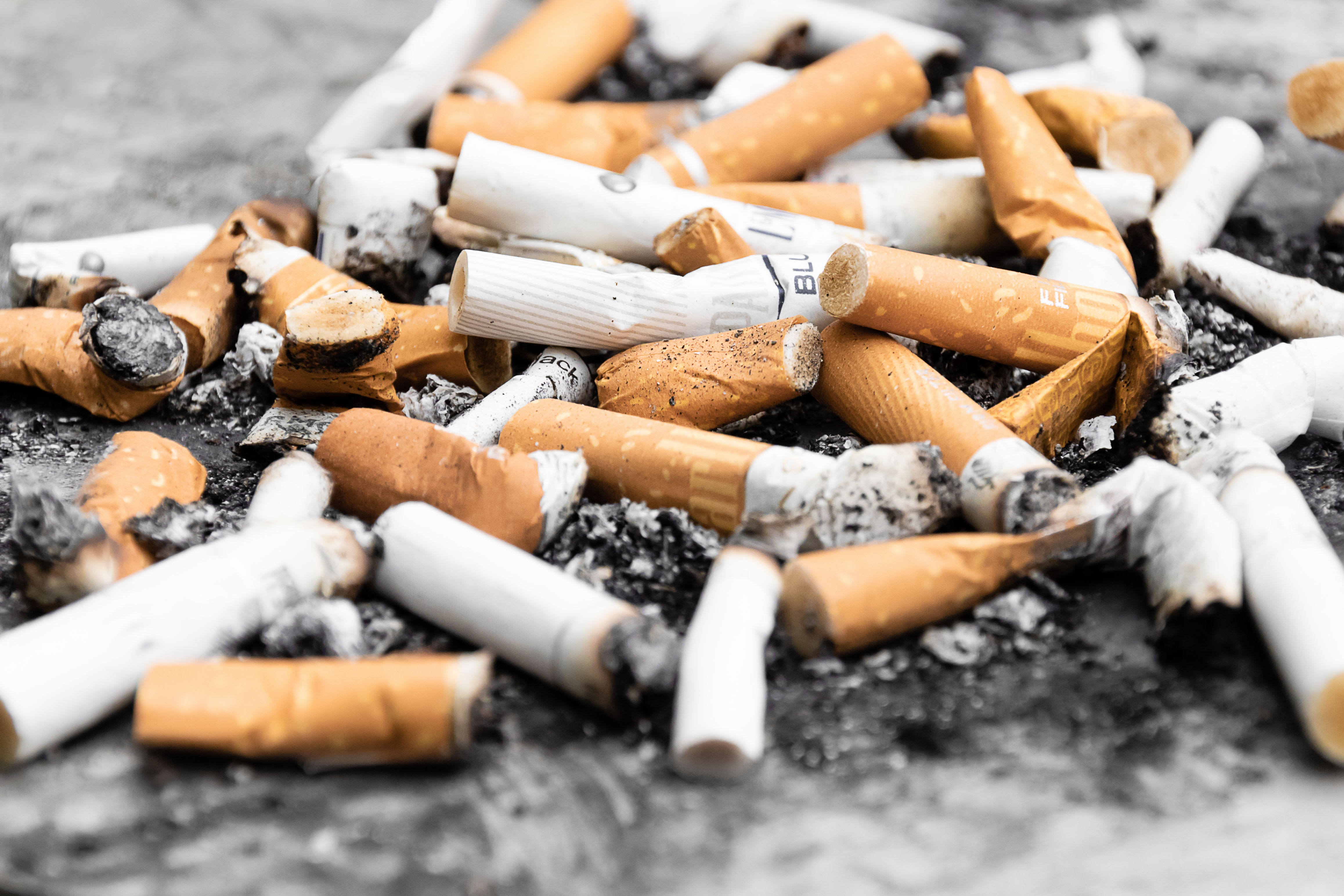 cigarette butts on highway